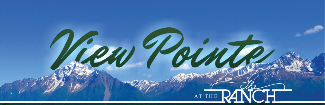 ViewPoint Ad Crop